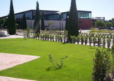 trabajos3-de-diseno-de-jardines-en-valladolid